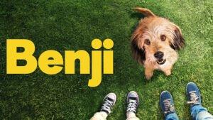 Dog Film on Netflix - Benji (2018)