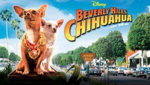 Dog Movie on Netflix - Beverly Hill Chihuahua (2009)