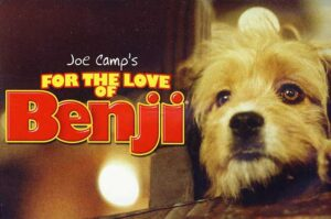 Dog Movie on Netflix - For The Love Of Benji (1977)