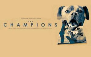 Dog Film on Netflix - The Champions (2015)