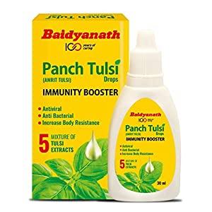 Baidyanath Tulsi Ark - Panch Tulsi Drops